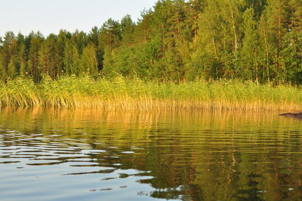 Finlandia09 454R