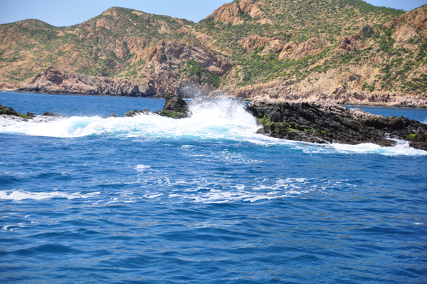 Cabo10-near Chileno Bay