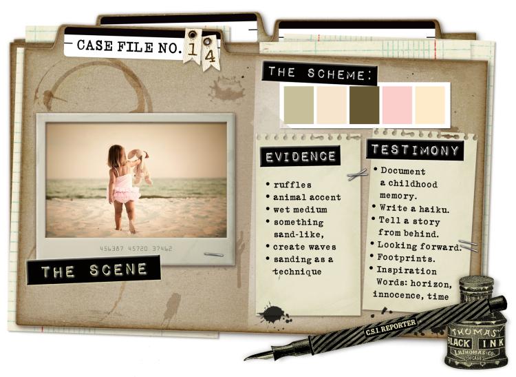 CaseFile14flat