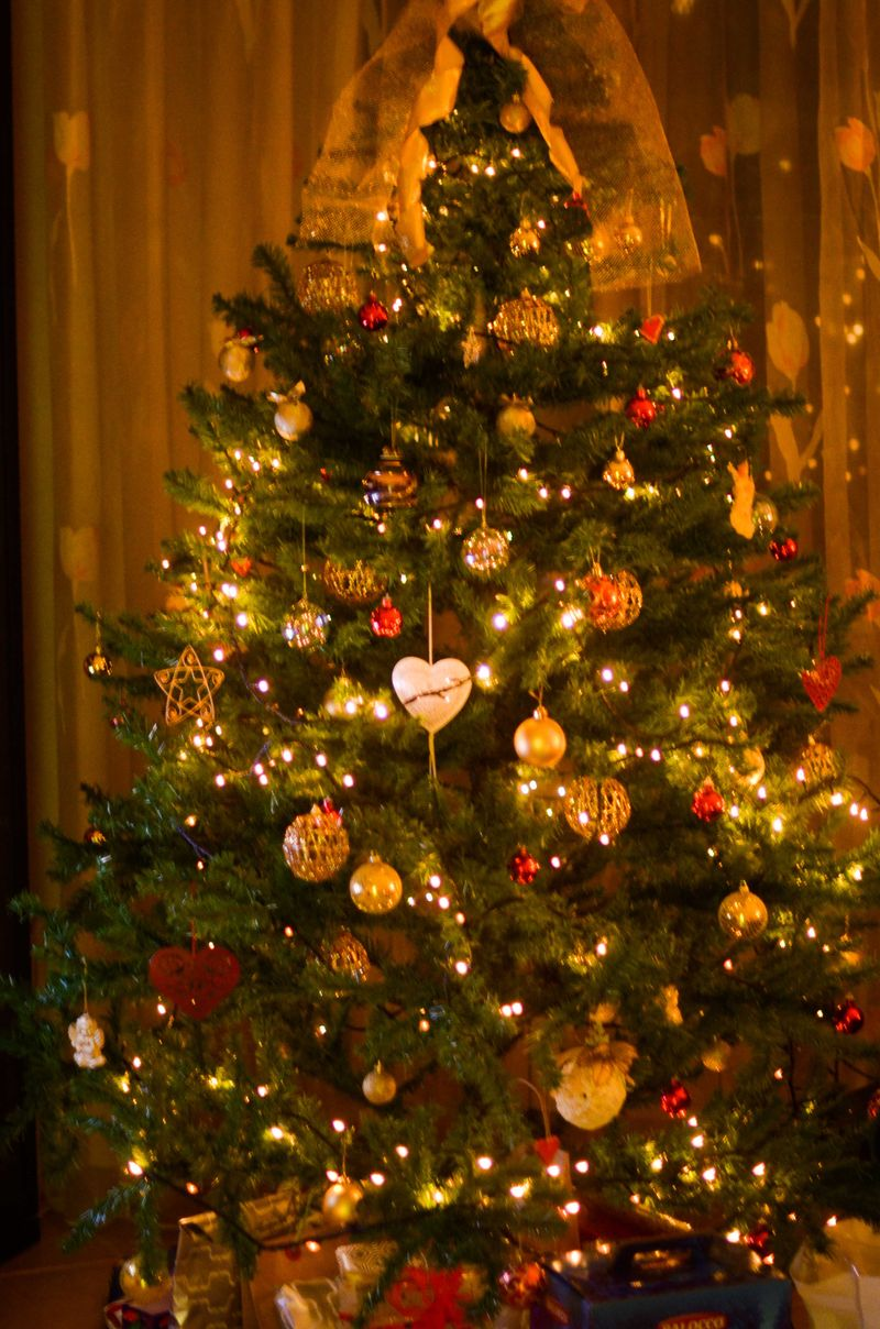 Christmas wishes12